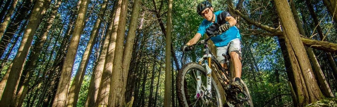 Mountain Bike Worlds